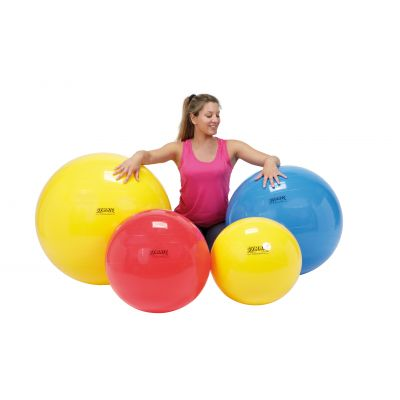 Clearance Gymnic Sensyball  - 28cm - NO packaging